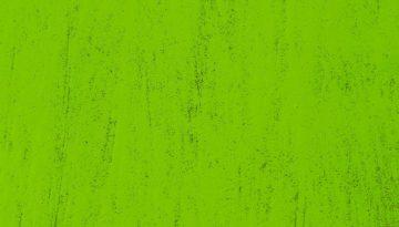 Den grønne bundlinje